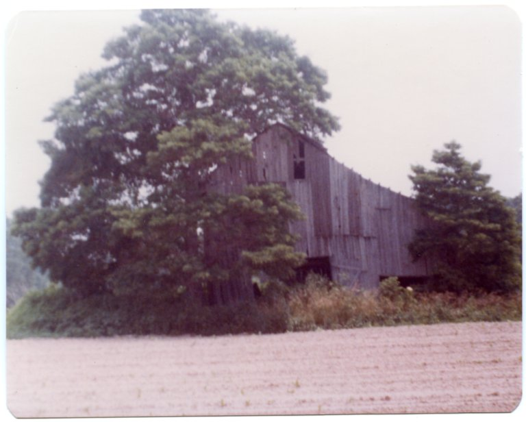 Unknown Barn with Tree