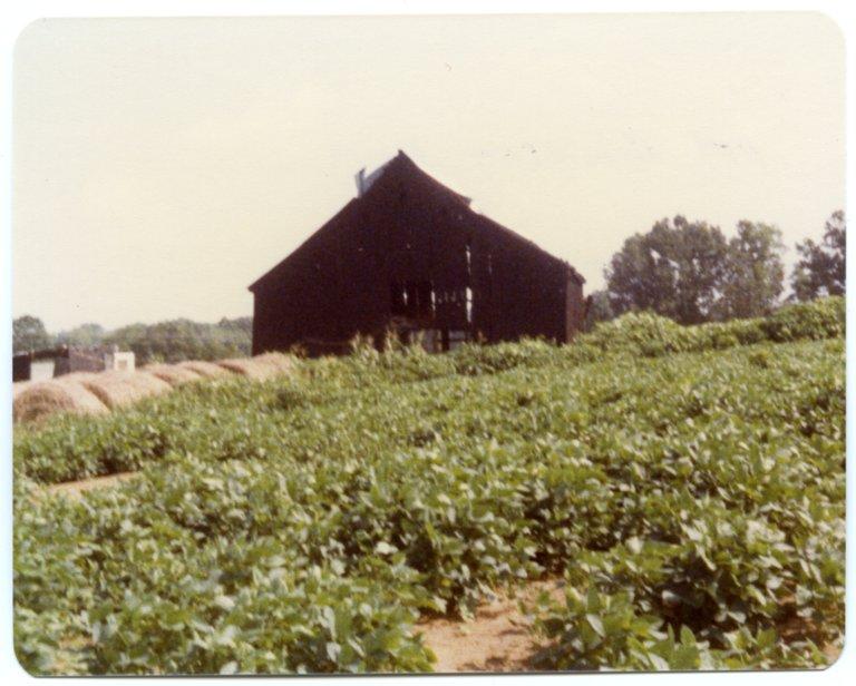 Barn on the Pat Robinson Farm