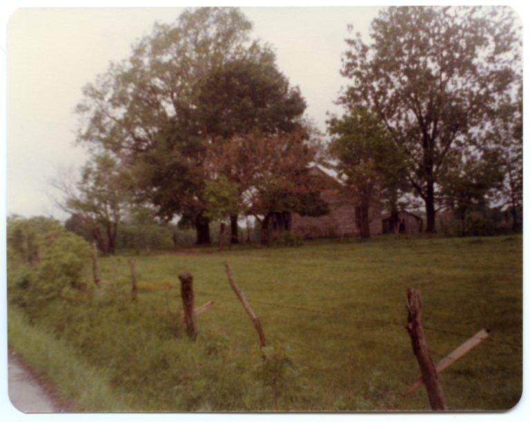 Doodle Glisson Farm