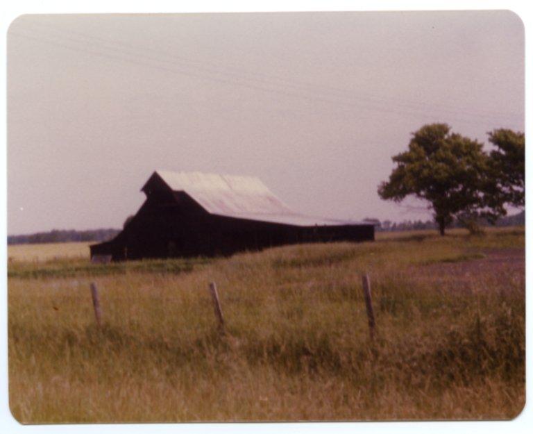 Stock Barn Near Bandana